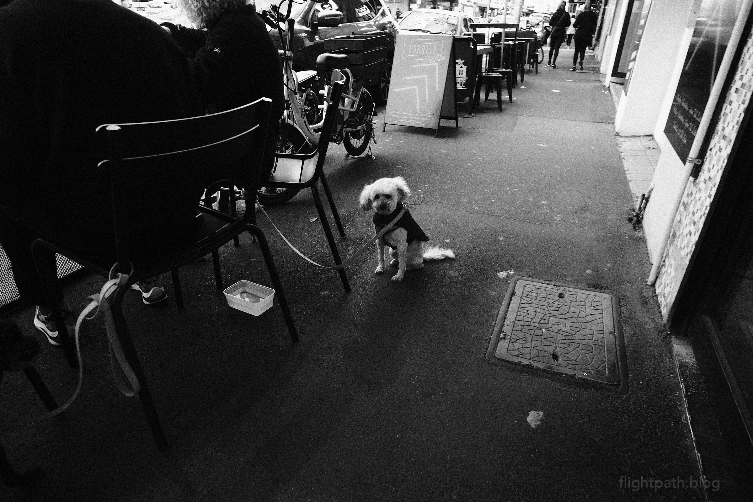 A small fluffy dog wearing a coat sits comically on the footpath beside its owners, who are seated and eating a meal. A sign board in the background points the way to the rooftop.